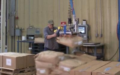 Przenoszenie kartonów na paletę wysyłkową